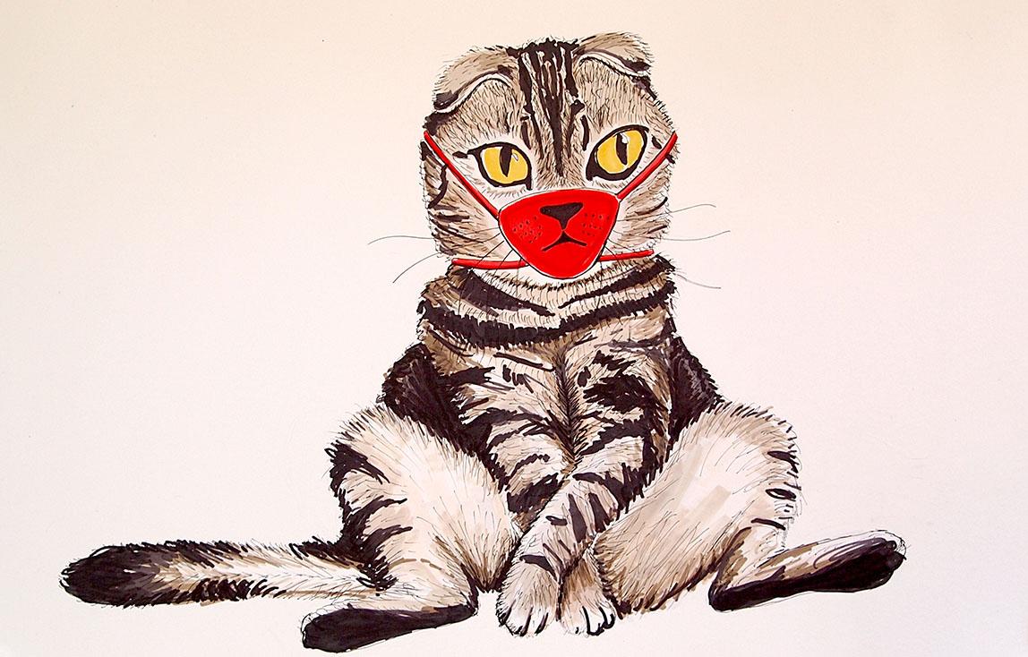 © 2020, Kristine Veta, Quarantine Kitty